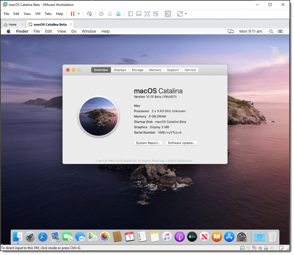 Install macOS Catalina on VMware