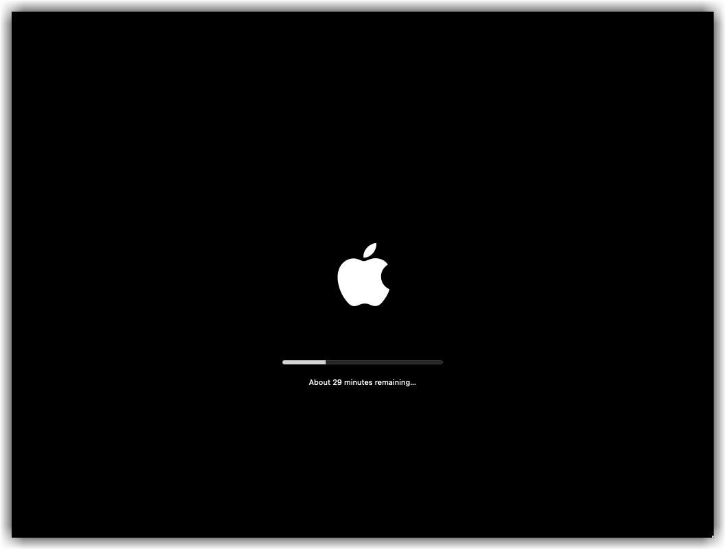 Installing macOS Monterey on VMware 02